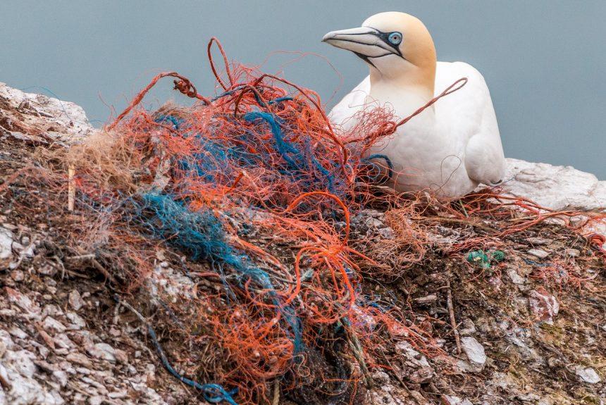 Океаните и замърсяването с пластмаса